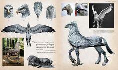 Harry Potter Comics, Harry Potter Spells, Harry Potter Fan Art, Harry Potter Universal, Harry Potter Fandom, Harry Potter World, Concept Art Books, Beast Creature, Creature Design