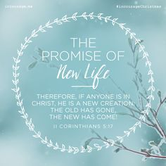 """Day 24- The Promise of New Life // """"Therefore, if anyone is in Christ, he is a new creation; the old has gone, the new has come!"""" {II Corinthians 5:17} // 25 Days of Christmas Promises #incourageChristmas"""