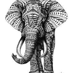 Doodled Elephanté