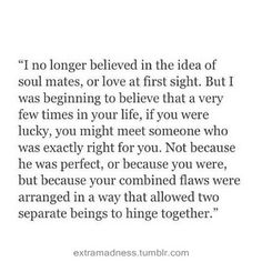 I no longer believed in the idea of soul mates, or love at first sight. But I was beginning to believe that a very few times in your life, if you were lucky, you might meet someone who was exactly right for you. Not because he was perfect, or because you were, but because your combined flaws were arranged in a way that allowed two seperate beings to hinge together.