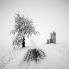 Winter tale. Czech Republic. [700x700] Photo by Martin Rak | by appletvscreensavor