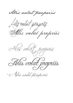 Alis Volat Propriis... She flies on her own wings...
