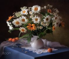 Still life with bouquet of daisies - null