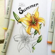 Piece of summer.  Маленькое лето ☀️