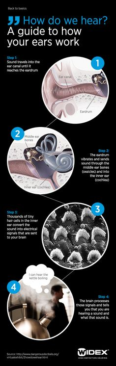 Check out how do we hear!!