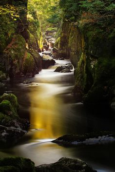 *Fairy Glen near Betws-y-coed in Wales*  |Photo by ~jon9600 ( Away for a bit )~ (jon baxter) October 15 2011  Betws-y-coed, Wales, Great Britain|