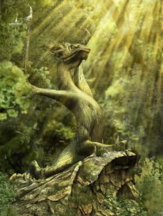 Wood Dragon by Chris Lomaka