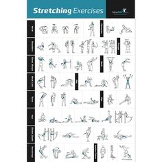 """Stretching Exercise Poster Laminated - Shows How to Stretch Specific Muscles for Your Workout - Home Gym Fitness Guide (20"""" x 30"""")"""