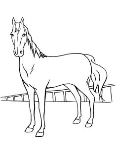 Print Coloring Image Horse PagesColoring BooksFree
