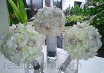 Redifa flora - Fresh flower - Bali Supplier florist - Florist decoration - Florist di Bali - Bali wedding decoration - Decoration florist