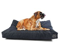 Dog Bed Diy