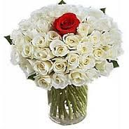 For your one of the best friends, this red rose is for that special one.