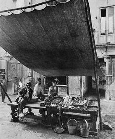 Banchetto del pesce, mercato. Napoli, 1890 (foto Alinari)