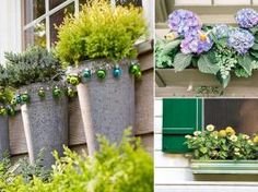 Fitted Prom Dress, DIY Window Box Ideas For Curb Appeal Of Your Home , Looking for that Perfect Prom Dress? Window Box Flowers, Window Boxes, Flower Boxes, Container Gardening Vegetables, Container Plants, Beautiful Home Gardens, Natural Pesticides, Cool Plants, Small Gardens