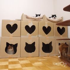 A cat castle = awesome use for boxes!