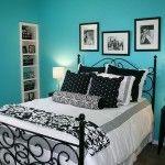 Aqua Blue Bedroom Walls Color Combinations