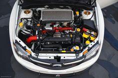 Automotive Dominance • Clean engine bay.