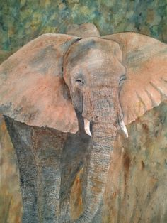 """Elephant 1 by Cathy Schneider. 11"""" x 14""""/Transparent watercolor and watercolor pencil on 300# Arches paper."""