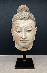 Remarkable Head of Buddha, Gandhara, century (item detailed views) Buddha Life, Buddha Art, Buddha Statues, Religion, Black White Tattoos, Buddhist Philosophy, Religious Icons, Effigy, Sacred Art