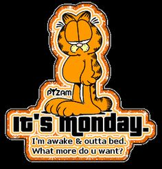 It's Monday . Garfield Monday, Garfield Quotes, Garfield Cartoon, Garfield And Odie, Garfield Comics, Garfield Pictures, Funny Day Quotes, Happy Day Quotes, Funny Good Morning Quotes