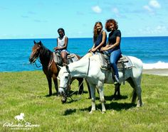 Friends enjoying a horseback tour in St.Lucia