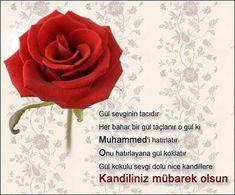 Regaib Kandili En Güzel Mesajları - Güzel Sözler Embedded Image Permalink, Internet, Rose, Flowers, Plants, Dua, Islam, Garden, Beautiful