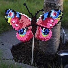 Butterfly hama beads by Panduro Hobby
