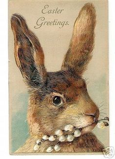 """""""Easter Greetings"""" ~ vintage Easter printable postcard with brown rabbit hare, frame and use for decorating. Vintage Easter, Vintage Holiday, Vintage Greeting Cards, Vintage Postcards, Lapin Art, Diy Ostern, Easter Parade, Bunny Art, Easter Celebration"""