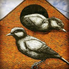 ROA New Mural In Chichester, UK 2013. One of the nicest ones...some were rather macabre!