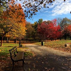 Prospect Park, Brooklyn, NYC