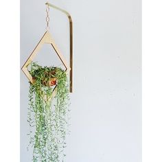 Great Shaped Hanging Plant Holder