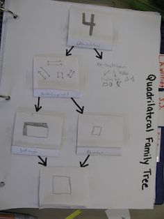 Quadrilateral Family Tree (flip book version)