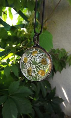 Daisy Terrarium pendant, Real dried flowers, glass pendant, medallion, daisy…
