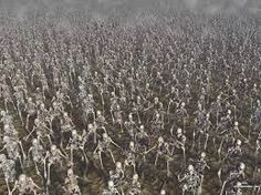 Image result for zombies marching