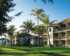 The delightful palm trees dance outside Pono Kai Resort. Pono Kai, Helicopter Tour, Kauai, Outdoor Pool, Snorkeling, Palm Trees, Natural Beauty, The Outsiders, Surfing