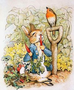 Peter Rabbit by the incredible Beatrix Potter