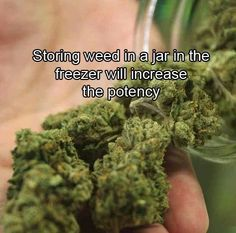 Storing weed in a jar in the freezer will increase the potency. For more info. get in touch with our doctor's online. #marijuana
