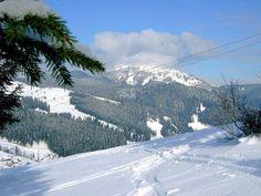 Взимку до невеликого села ЯблуницяІвано-Франківської області приїздить дуже багато туристів. Саме тут розташований гірськолижний курорт«Яблуниця». А за декілька кілометрів побудовано...