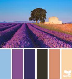 provence hues