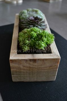 DSC 0949 533x800 Small succulents planters / Petite décorations de table in pallet home decor diy pallet ideas  with Succulents Planters Pal...