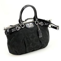11 Best Bags ❤️ images | Bags, Purses, Coach purses