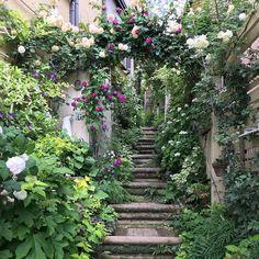 Garden Gates Ideas – Greenest Way Small Gardens, Outdoor Gardens, Pergola, Rose Garden Design, Garden Steps, Garden Path, Garden Cottage, Garden Pictures, Dream Garden