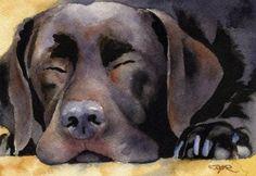 Labrador Retriever CHOCOLATE LAB Dog Signed Art Print by Artist DJ ...