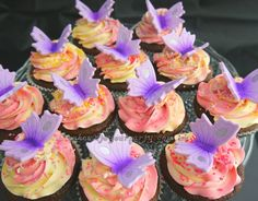 So cute!  Chocolate cupcakes with a two tone vanilla/strawberry swirl, handpainted fondant butterfly and nutfree pearl/crystal sprinkles on top.