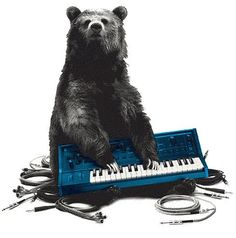 Synth bear say: plug it in!