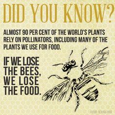 Save the bees and save the planet! I Love Bees, Bee Friendly, Bee Art, Busy Bee, Save The Bees, Bee Happy, Bees Knees, Bee Keeping, Queen Bees