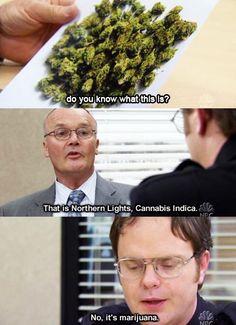 NO, it's marijuana!!