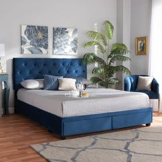 Baxton Studio Caronia Modern and Contemporary Navy Blue Velvet Fabric Upholstered King Size Platform Storage Bed - Wholesale Interiors Caronia-Navy-KingTransform your bedroom into a glamorous sanctuary with the Caronia bed. This chic bed is uphol Queen Size Platform Bed, Platform Bed Frame, Upholstered Platform Bed, Blue Velvet Fabric, Velvet Bed, Black Bedding, Baxton Studio, Adjustable Beds, Bedroom Sets
