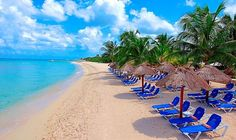 The Allegro Cozumel Resort has 300 charming rooms located on San Franciso beach just 5 minutes from the famed Palancar reef. The rooms are located in two-story thatched roof villas with 8 rooms per building. All Inclusive Honeymoons