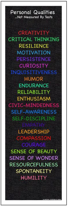 Qualities not measured by standardized testing